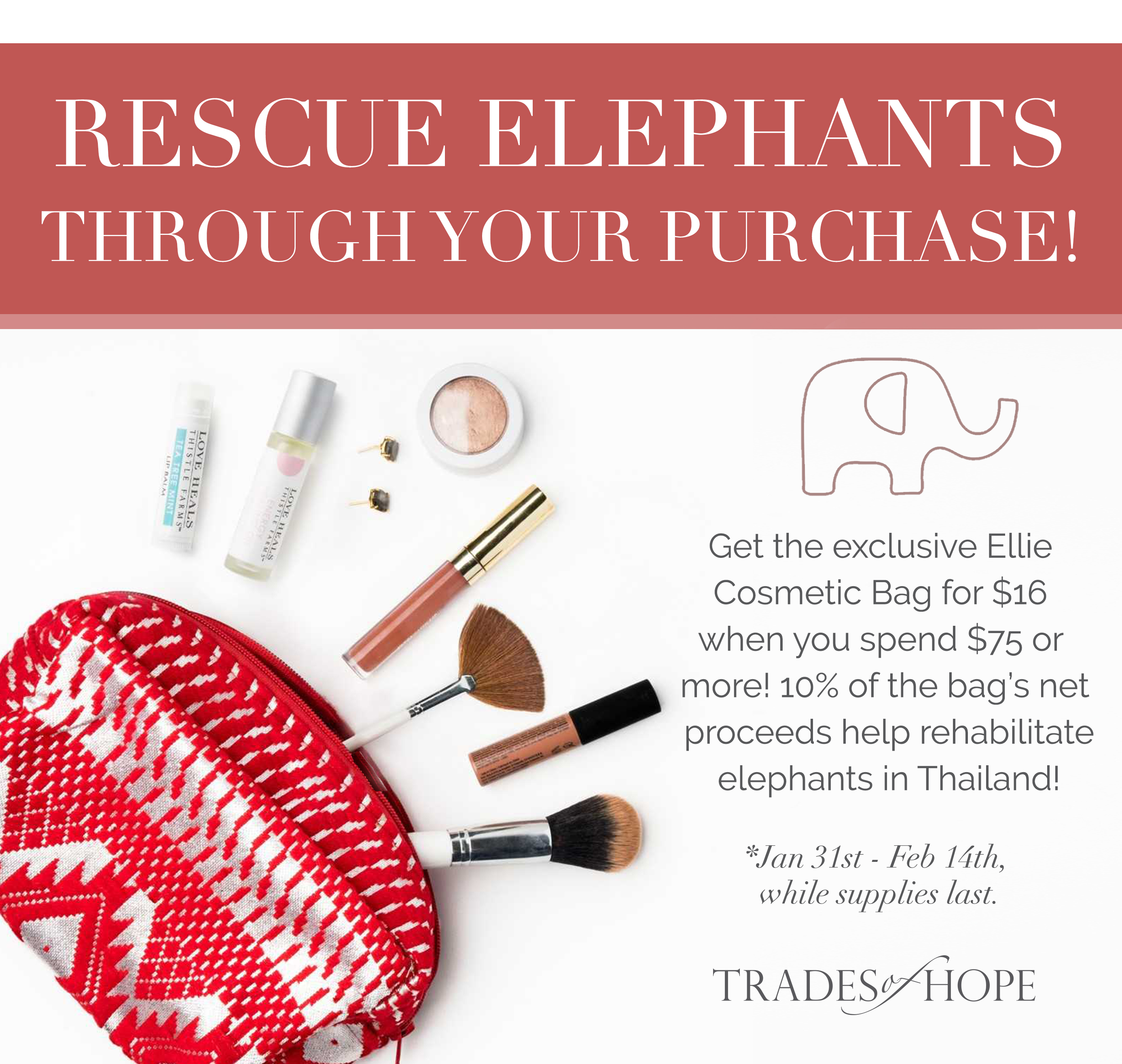 Shop Trades of Hope!